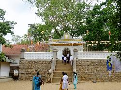 ‪Sri Maha Boodhi Temple‬