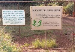 Kanepuu Preserve
