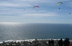 Parapax Tandem Paragliding - Cape Town