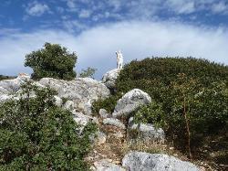 La Sierra De Las Nieves