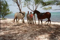Cayman Horse Riding