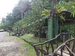 kanneliya Forest Reserve