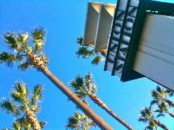 City Wander Walks LA