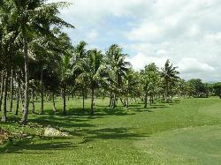 Denarau Golf and Racquet Club