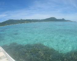 さんご礁の海から - 日帰りツアー