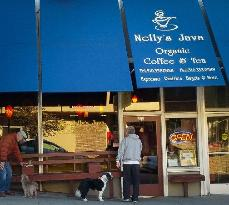 Nelly's Java