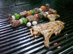 Carnivoro