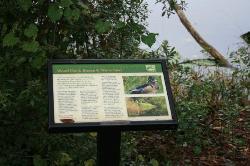 Jacksonville Arboreteum & Gardens