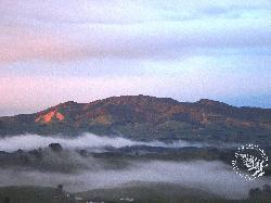 Sanctuary Mountain Maungatautari