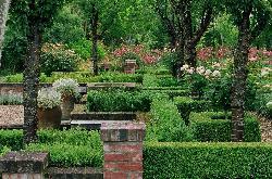 Frensham Gardens