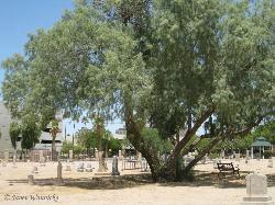 Pioneer and Military Memorial Park
