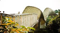 亨德森波浪桥