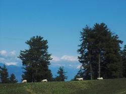 sanasar valley