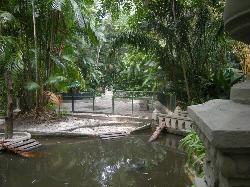 Bosque Rodrigues Alves - Jardim Botânico da Amazônia