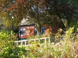 Copper Beech House B&B