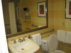 Accessible Bathroom - Sink Area