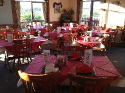 ‪Rambling Rose‬
