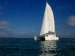 Catamaran Sailing Miami - Day Tours