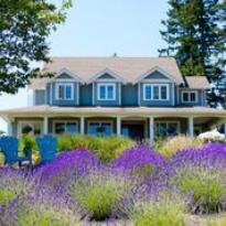 Damali Lavender Farm and B&B