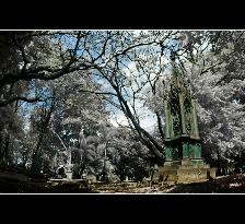 プラサスティ墓地公園 (博物館)