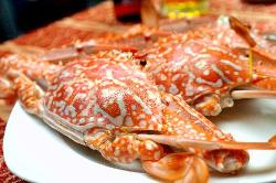 Nhat Phong 3 Seafood Restaurant