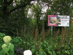 Parc de la Falaise et la Chute Kabir Kouba