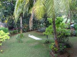 Prakruti Resort - the view from the room