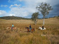 Chapman Valley Horse Riding
