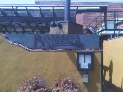 Bonterra Restaurant