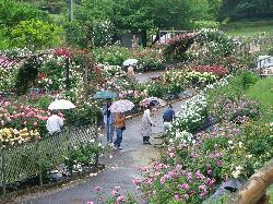 Nishiyama Park