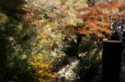 Hananuki Valley