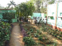 Hotel Amarapali