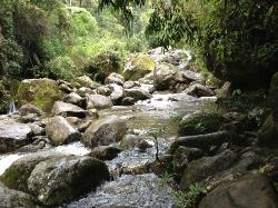 Cachoeira Véu da Noiva  (53799657)