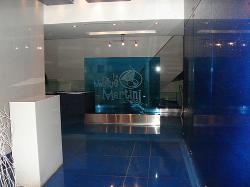 The Blue Martini Lounge