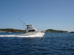 Black Pearl Sportfishing Charters
