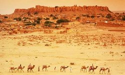 Wild Desert Resort  a unit of Rao Bikaji Group