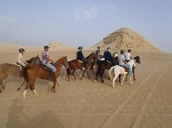 Al Sorat Farm