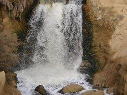 Al-Fayoum Oasis