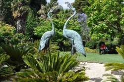 Geelong Botanical Gardens