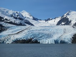 Alaska's Finest Tours & Cruises - Tours