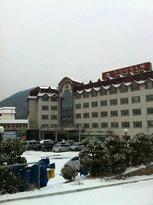 Chosun Tourist