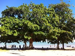 Cumuruxatiba Beach