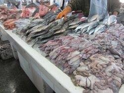 Dubai Deira Fish Souk