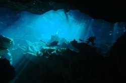 Dive Cenotes Mexico