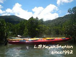 Iriomote Island Nature Experience Tour LB Kayak Station