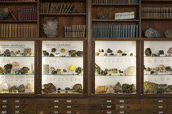 UCL Geology Collections