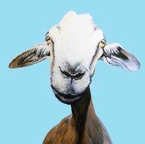Galería de Arte Cabra Cabra