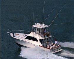 Bobby B Fishing Charters