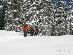 Winsor Trail