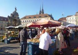 Zelny trh